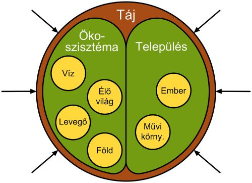 Kisfaludi 3